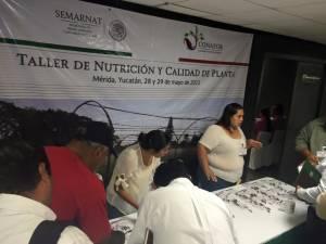 Probiomex Taller De Nutricion Y Calidad De La Planta (4)