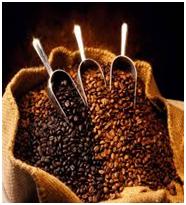 CAFÉ ORO AZTECA