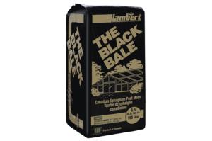 LAMBERT(BLACK BALE BLOND PEAT MOSS DE 5.5 FT)